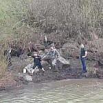 В Березовском полицейские разыскивают героя, спасшего ребенка из воды (1)