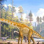 https://www.dinosauruswebshop.nl/wp-content/uploads/2017/07/image_3741_1e-Giraffatitan.jpg